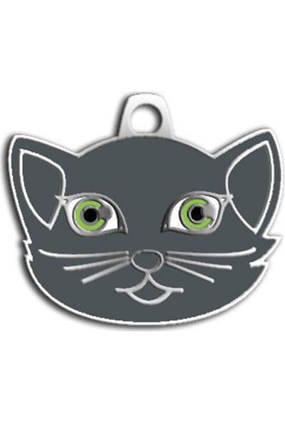 Pet Tag British Shorthair Kedi Künyesi