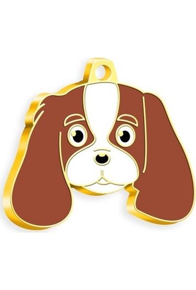 Pet Tag 24 Ayar Altın Kaplama Cavalier King Charles Köpek Künyesi