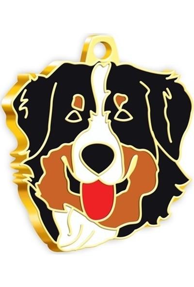 Pet Tag 24 Ayar Altın Kaplama Avustralya Çoban Köpeği Köpek Künyesi
