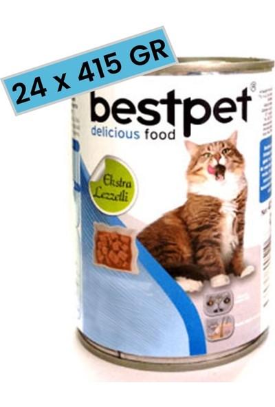 Best Pet Jöle İçinde Parça Etli Somonlu Konserve Yetişkin Kedi Maması 415 gr. (24 Adet)