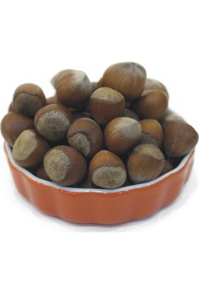 Çerez Tabağı Kabuklu Fındık 500 gr