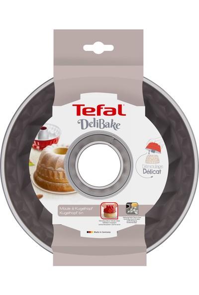 Tefal J1640214 Delibake Alman Kek Kalıbı 22cm - 2100104738