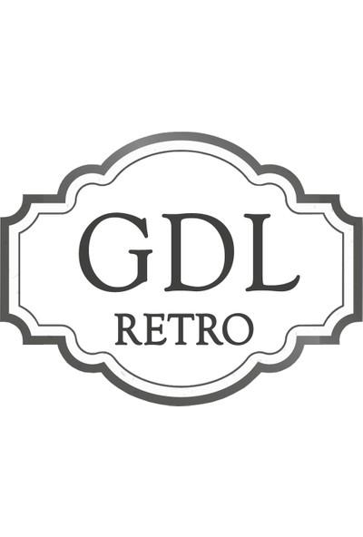 GDL Retro Plak Temizleme Sprey