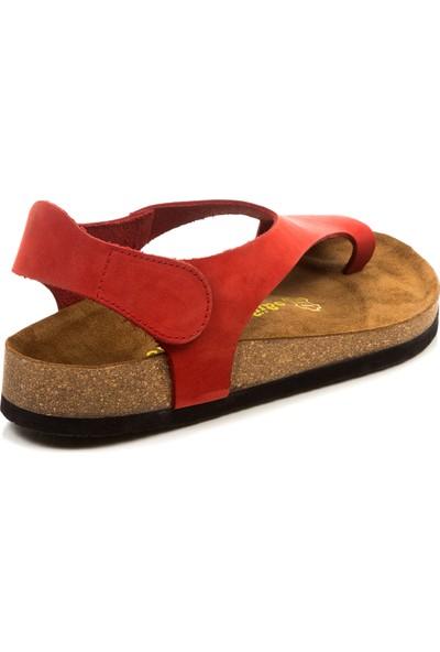 Comfortfüsse IvyKids Natural Yün Çocuk Ev Ayakkabısı