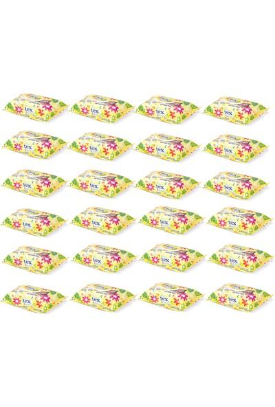 Tex Baby Islak Havlu 100 Yaprak Sarı 24'lü Paket