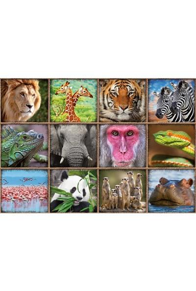 Educa Puzzle Wild Animals Collage 1000 Parça Puzzle