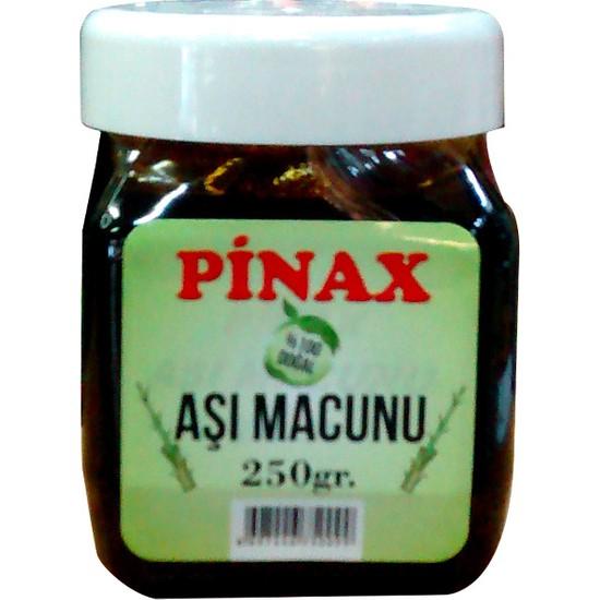 Pinax Aşı Macunu 250 gr - Ağaç ve Bitkiler İçin