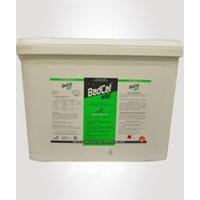 Dual Kimya Badcat Wax Mum Blok Lağım Faresi Zehirleri 10 Kg.