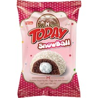Elvan Today Snowball 60 gr X 24
