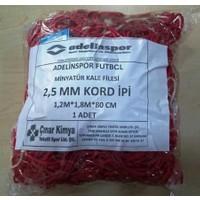 adelinspor Minyatür Kale Filesi 120/180/60Cm 10*10 Göz 2,5 Mm Renkli