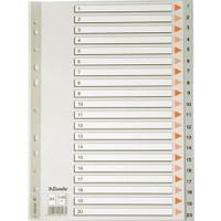 Esselte Seperator A4 1-20 Rakamlı