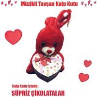 Toptancı Amca Müzikli Peluş Tavşan Kalp Kutu İçinde Sürpriz Çikolatalar Arajman