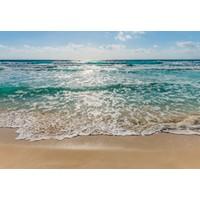 Komar 8-983 Seaside Duvar Posteri
