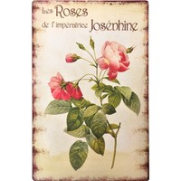 Decotown Roses Ahşap Pano 40*60 (18167)