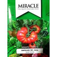 Miracle Tohum Etli Yayla Tipi Köy Domatesi Tohumu (5 gram)