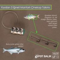 Spotbalık 3 İğneli Mantarlı Çinekop Kıyı Takımı Lt10