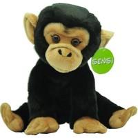 Sensi Maymun 30cm