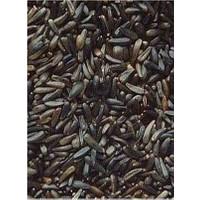 Yeşil Boncuk Kuş Üreticilere Nijer Tohumu 600 Gr