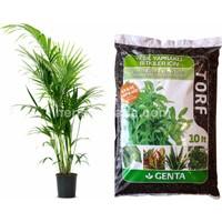 Genta Yeşil Bitki Torfu 10 lt.
