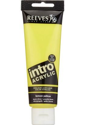 Reeves İntro Akrilik Boya 120Ml - Lemon Yellow