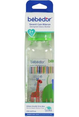 Bebedor 31302 Desenli Cam Biberon 250 ml (Asortili)
