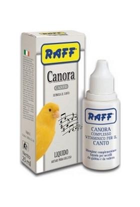 Raff Canora Canto 25 Ml