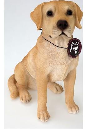 Gp Köpek Labrador 21.5 cm