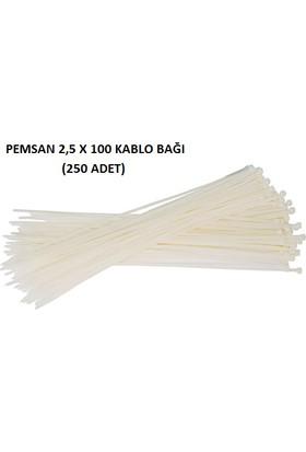 Pemsan 2,5X100 Kablo Bağı