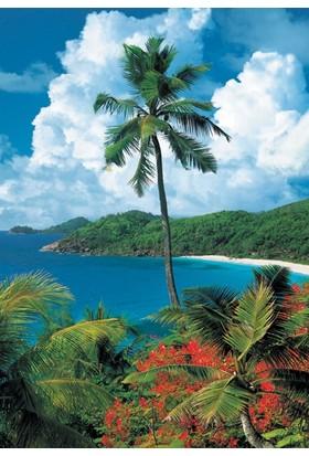 Educa Mahe Island Seychelles