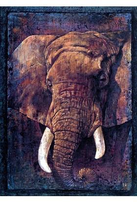 Art Stones African Elephant Louis Pan 1000 Parça Puzzle