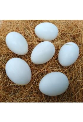 Vixpet Yapay Tavuk Yumurtası Orijinal Boyutta 6'lı Paket