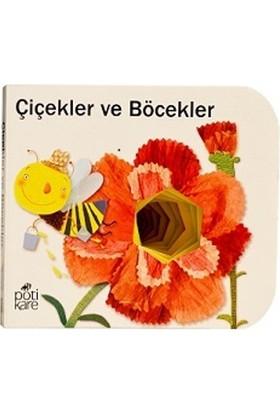 Çiçekler Ve Böcekler