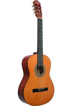 Gitar Klasik Arenas Model No:AC480Y