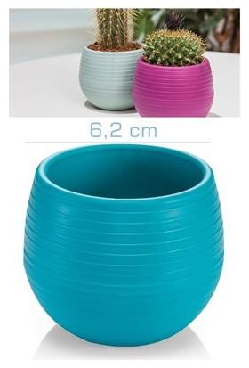 Homecare Kaktüs Saksı Mini Turkuaz Renk 091972
