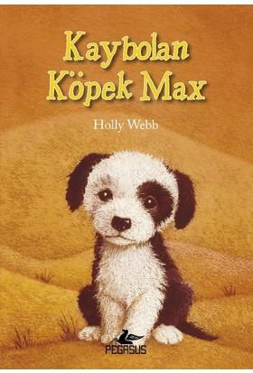 Kaybolan Köpek Max - Holly Webb