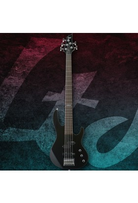 Esp Ltd B-55 Black Bas Gitar