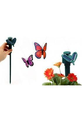 Pratik Solar Butterfly Güneş Enerjili Uçan Kelebek