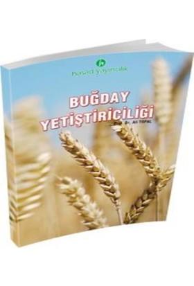 Hasad Buğday Yetiştiriciliği Kitabı