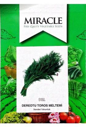 Miracle Tohum Toros Meltemi Dere Otu Tohumu (10 gram)
