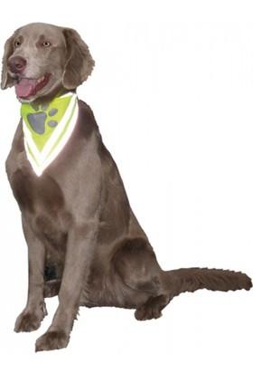 Nobby Safety Köpek Güvenlik Bandanası Xl