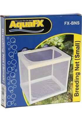 Aquafx Fx-Bns Tül Yavruluk