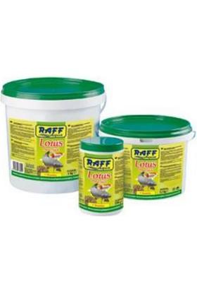 Raff Lotus Havuz Balıkları Yemi 1,5 Kg