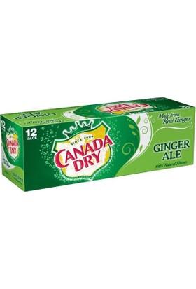 Canada Dry Ginger Ale İçecek 12'li Paket