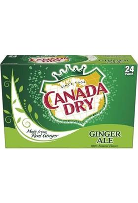 Canada Dry Ginger Ale İçecek 24Lü Paket