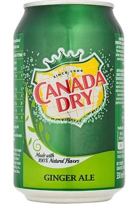 Canada Dry Ginger Ale İçecek 330 ml