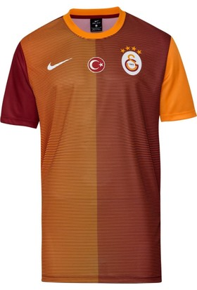 Nike Galatasaray M Hm Supporters Tee Erkek T-Shirt 776860-630