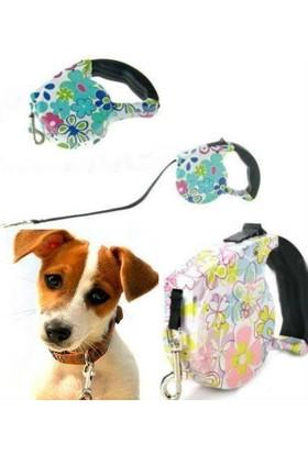 Anka Pup Style Desenli Köpek Gezdirme Tasması
