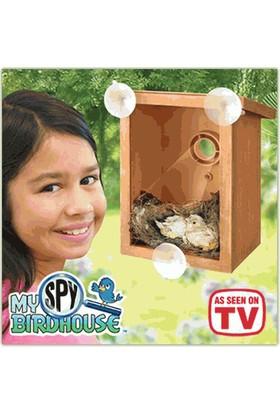 Anka My Spy Bird House Gözlemlenebilir Kuş Yuvası