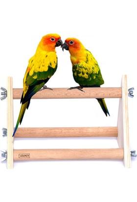 Vixpet Papağan Tünek Standı Üçgen