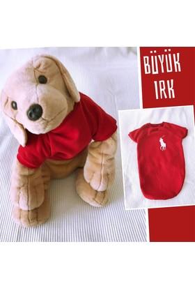 Kemique Kırmızı Sweatshırt - Büyük Irk - By Kemique Köpek Kıyafeti Köpek Elbisesi